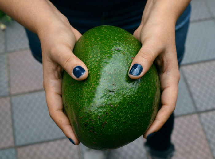 Close-up of person holding fruit