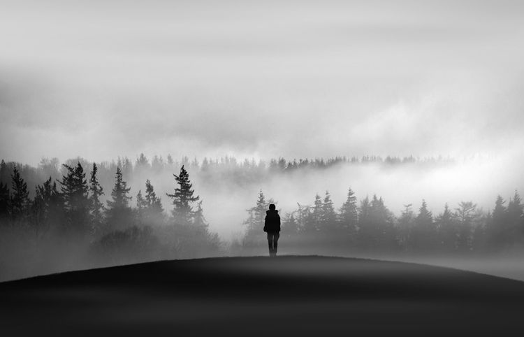Adult Adults Only Beauty In Nature Day Fog Full Length Leisure Activity Men Mountain Nature One Man Only One Person Only Men Outdoors People Real People Rear View Scenics Silhouette Sky Sportsman Tree Water