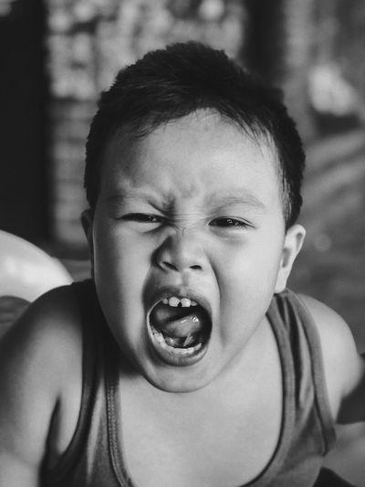 Portrait of boy shouting