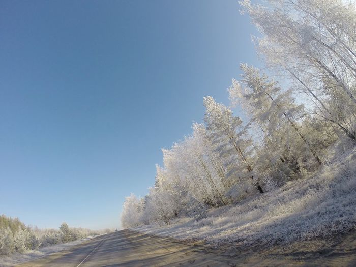 Frost in November. Countryside, Russia Gopro Roadtrip Frost Nature Beauty In Nature Road Autumn MotoTrips