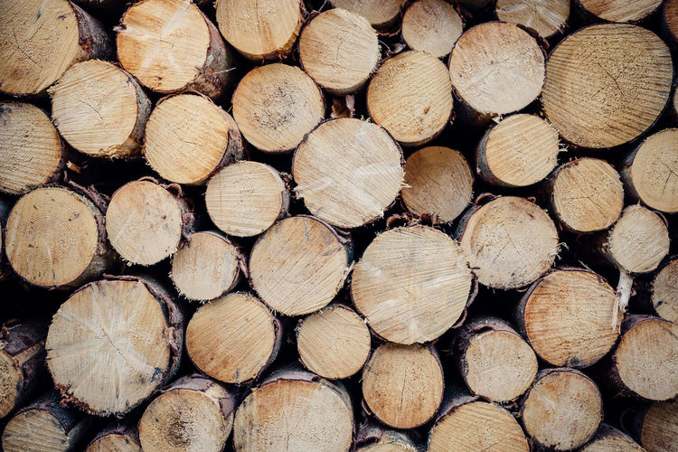 some wood Abundance Backgrounds Brown Chopped Deforestation Environmental Issues Firewood Forest Full Frame Heap Large Group Of Objects Log Lumber Industry No People Outdoors Pattern Stack Timber Tree Tree Ring Wood Wood - Material Wood Grain Woodpile