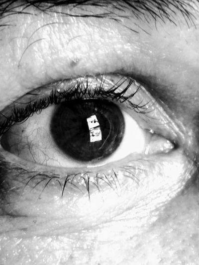 Eyes iris Human