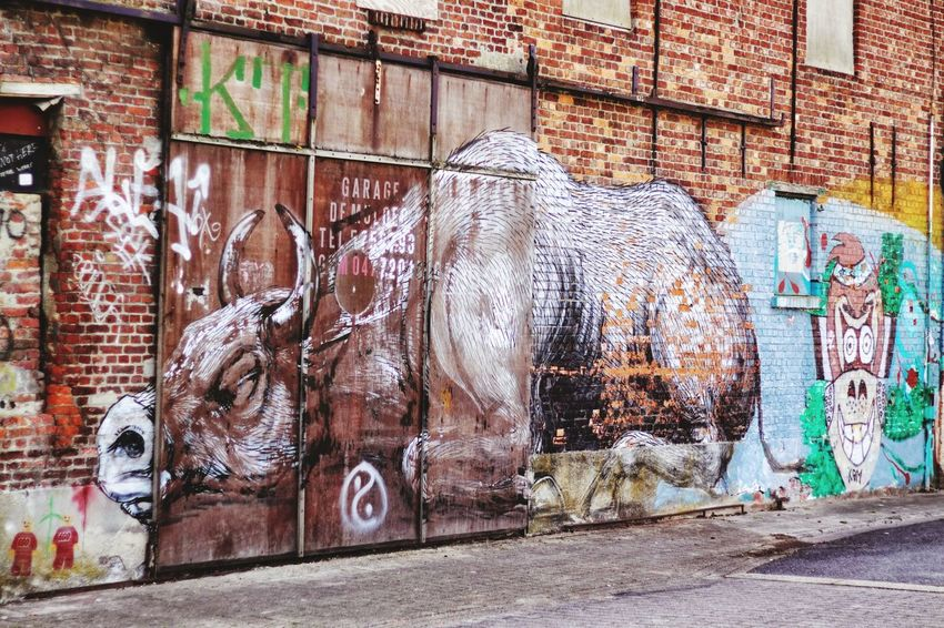 Graffiti Art And Craft Street Art Creativity Animal Representation Text Architecture Built Structure Day No People Building Exterior Multi Colored Outdoors Doel Belgium
