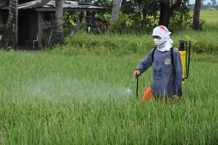 Crop sprayer spraying on field