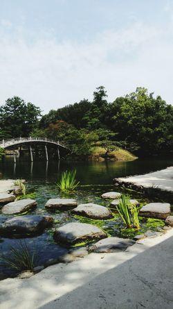 Lake Zen Riviere Zen Attitude Japanese Garden Zen Garden Pont Solitude a Takamatsu Japan