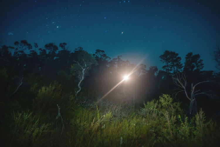 Moon Nights Blue Mountains Australian Bush Blue Mountains Blurred Brook Creekside Full Moon MoonNights Beauty In Nature Bushland Haunting  Landscape Light And Shadow Lightpaint Longtimeexposure Moon Glare Moon Light Moon Scape Moonlight Mysterious Nightscape Nightsky Outdoors Scenics Stars Tranquility