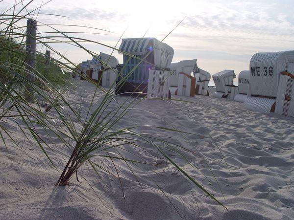 Beach Beach Photography Beach Chair Outdoors No People Sky Nature Shore Strandkorb Strand Baltic Baltic Sea Ostsee Ostseeküste Kühlungsborn Holiday Urlaub