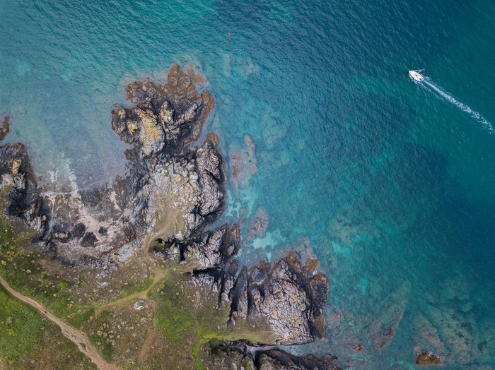 Bretagne Animal Wildlife Beauty In Nature Day Environment High Angle View Marine Nature No People Outdoors Pollution Rock Rock - Object Scenics - Nature Sea Sea Life Solid Togetherness Tranquil Scene Tranquility Turquoise Colored UnderSea Underwater Water