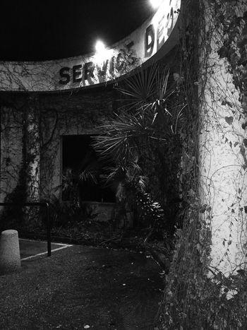🏚🏥🏭 Architecture Built Structure Building Exterior Night Illuminated Plant No People Outdoors Growth Tree Nature Sky Abandonned Abandonned House Hospital Urgences Emergency