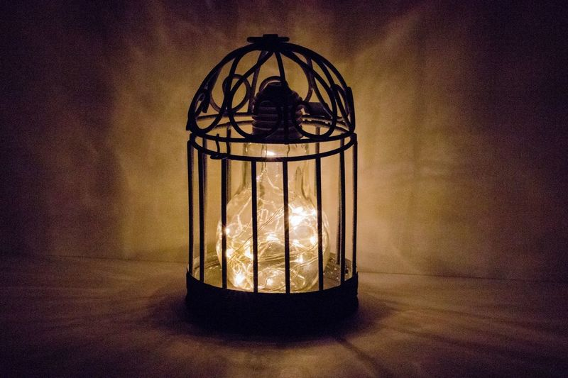 Lightbulb trapped in a birdcage Texture Copy Space Bright Ideas Bright Moody Metal Cage Glowing Lights Trapped Lightbulb Lighting Equipment Indoors  Illuminated Electricity  No People Close-up Day