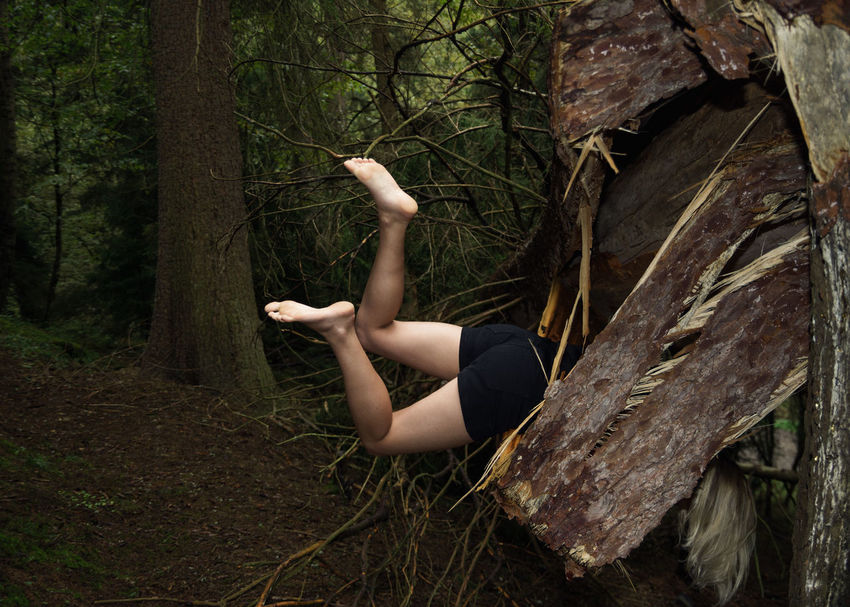 Don't go There, It's a Trap Dead Tree Fallen Tree Falling Linas Was Here Nature Trees Black Shorts Forest Legs Stuck Trap Wild Woods
