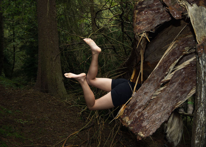 Low section of woman on tree trunk in forest