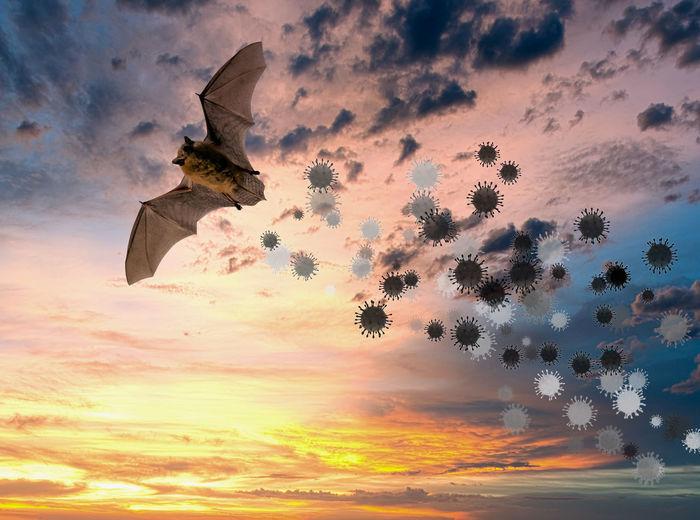 Digital composite image of dramatic sky