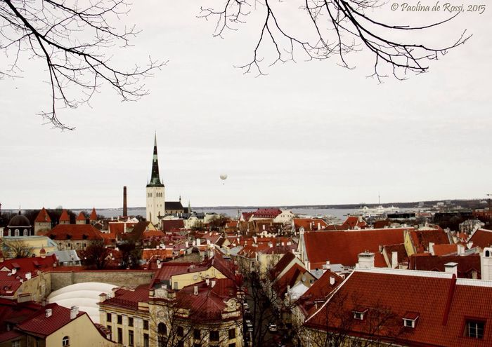 Estonia Tallinn Old Town Europe Trip European Union Old Buildings Cityscapes Old Town Architecture_collection Urban Landscape Urbanphotography