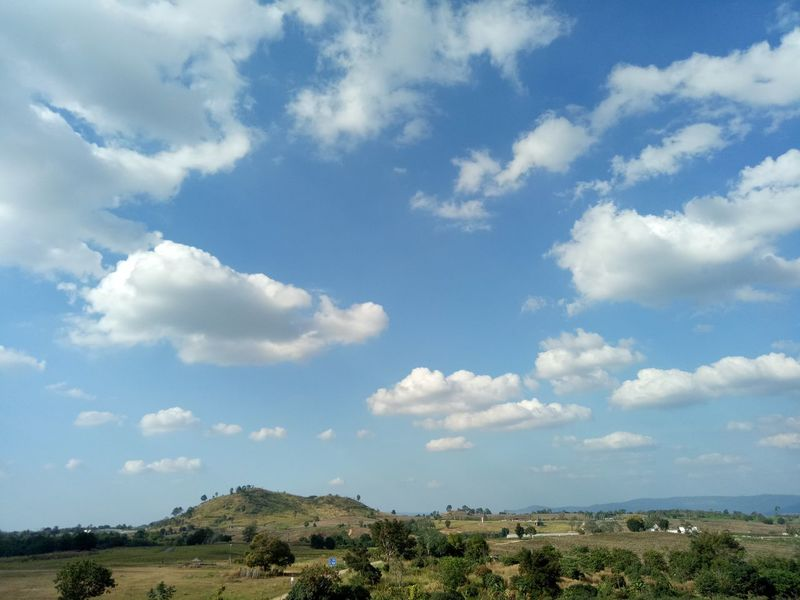 Sky cloud and mountain. Nature trip. Long time ago. Nature Day Sky Bare Tree Bird Beauty In Nature Perching Clear Sky Branch No People Animals In The Wild Low Angle View Songbird  Tree Blue Outdoors Thailand EyeEmNewHere Travel Destinations Landscape Travel Tourism