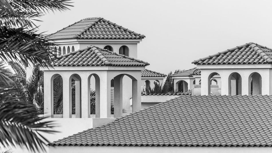 Architecture Architecture Building Exterior Buildings Built Structure Cityscapes Clear Sky Day No People Outdoors Palm Tree Roof Tile Rooftops Sky