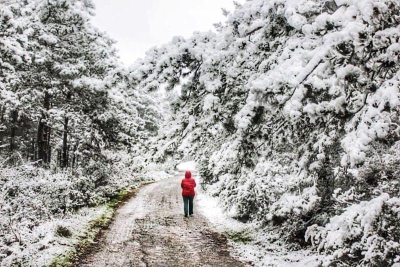 Snow Kış Soguk Istanbul