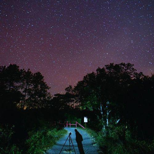 เซลฟี่กับดาว Nightscape Phukradueng Loei Photos Thetrippacker Outdoorresearch Reviewesan Reviewthailand Walkwithuniverse Thailand_allshots Thaitraveling Thailand Astronomy Starwalk Amazingthailand Bestoftheday Ngthainaturecalling