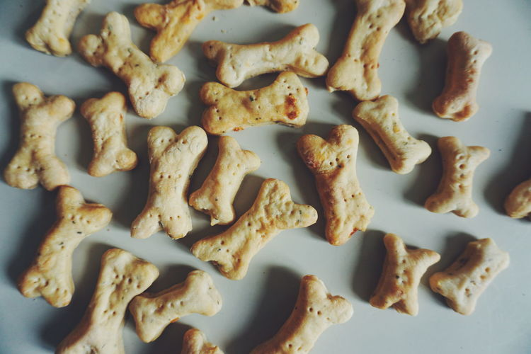 homemade dog cookies Cookies Bisquit Dog Food Dog Petal Pet Equipment Pets Cookie Directly Above Snack Baking Sheet Close-up Food And Drink