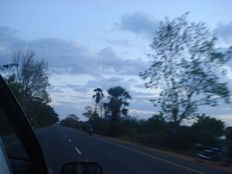 Exterior beauty of nature from moving vehicle Capturing The Moment Carview Cloud - Sky Cloudy Country Road Journey Land Vehicle Mode Of Transport On The Move Outdoors Road Sideview Sideviewmirrorshot Sky The Way Forward Transportation Tree Windshield