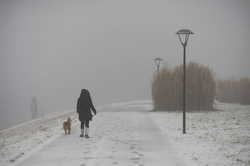 Adult Day Nature One Person People Rear View Sky Snow Tree Winter Half Caste Animal Fog Cold Temperature Pets Domestic Animals Woman Ice One Animal Dog Outdoors Mammal Walking Warm Clothing