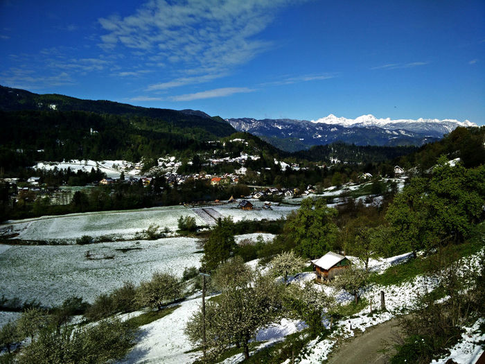 Beauty In Nature Cold Temperature Day Europe Idyllic Landscape Mountain Nature No People Outdoors Radovljica Scenics Sky Slovenia Snow Tranquil Scene Tranquility Tree Shades Of Winter