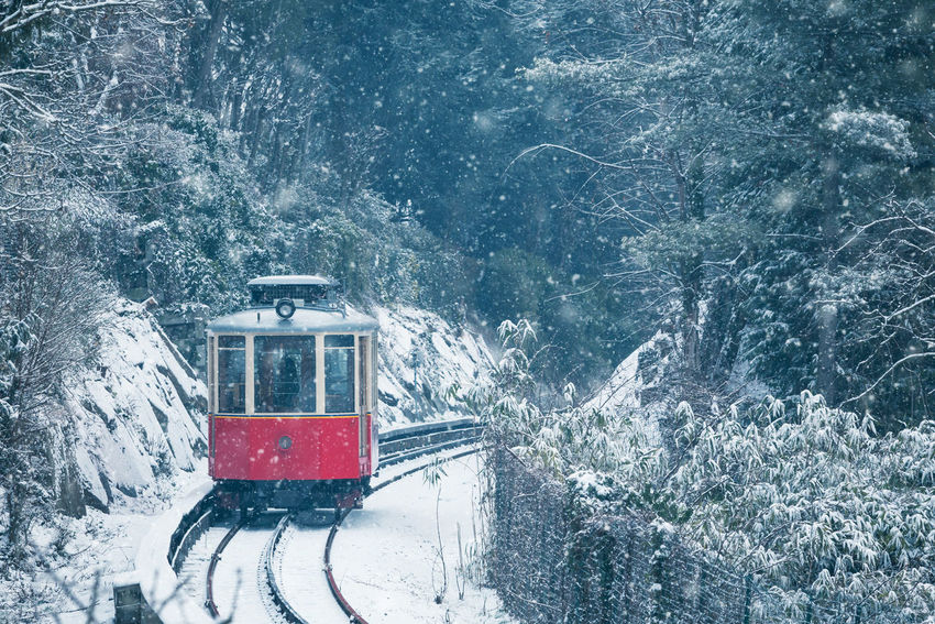 The historical Sassi – Superga rack tramway in winter time. Superga Torino Winter Beauty In Nature Cold Temperature Day Mountain Nature No People Outdoors Red Train Road Scenics Snow Snowdrift Snowflake Snowing Train Tramway Transportation Tree Weather Winter