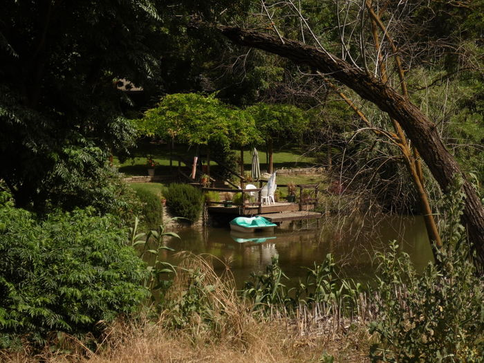 High angle view of pedal boat on lake amidst trees