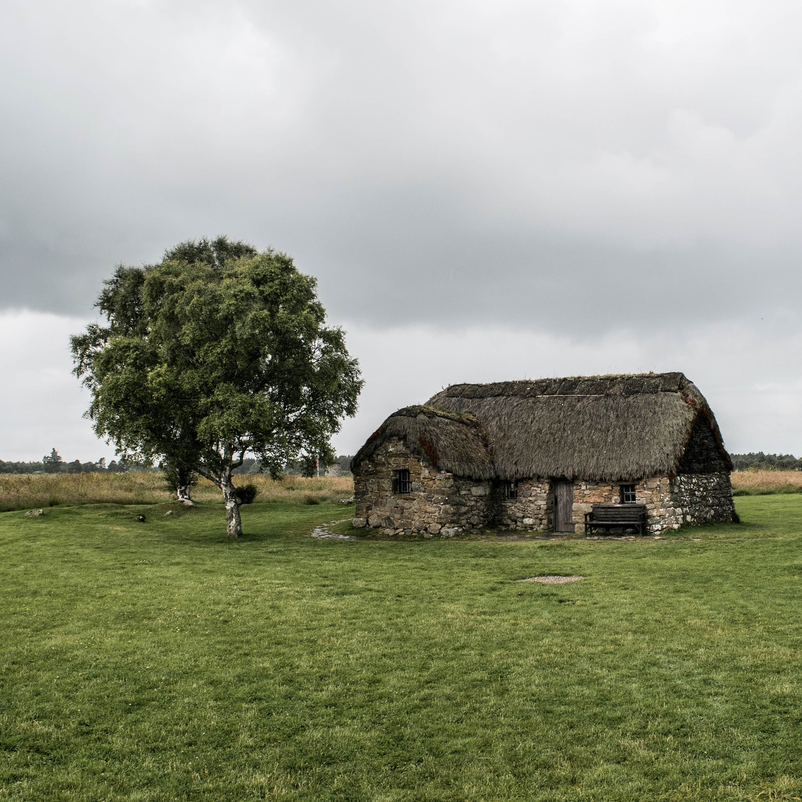 grass, sky, architecture, built structure, building exterior, field, grassy, cloud - sky, landscape, green color, house, tree, rural scene, cloudy, cloud, tranquility, tranquil scene, nature, abandoned, growth