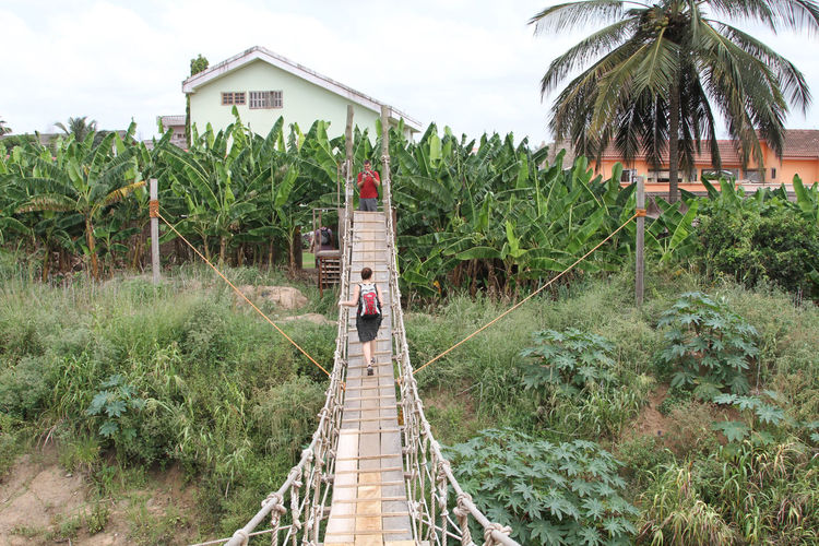 Day Footbridge Full Length Growth Men Nature One Person Outdoors People Plant Real People Sky The Way Forward Tree
