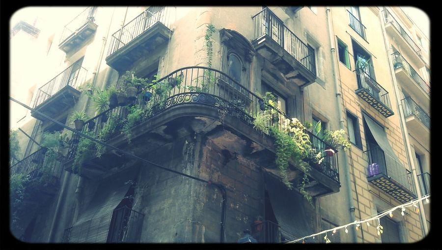 Streetphotography Balcony