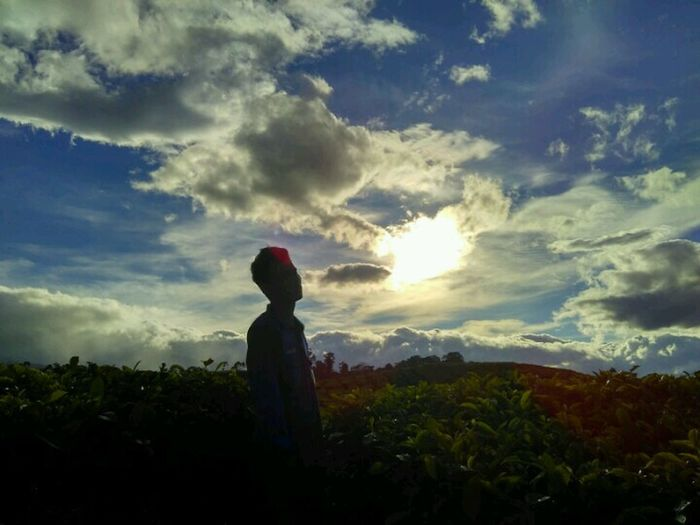 Kebun Teh Liki Solok Selatan Sunset One Person Cloud - Sky People Only Women Sky One Woman Only Outdoors Adventure Silhouette Nature Side View Night Landscape Adult Childhood Standing Full Length Grass First Eyeem Photo