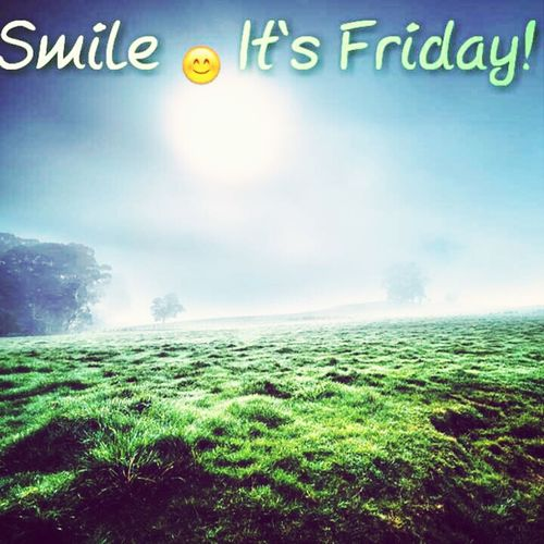 Smile Mf'