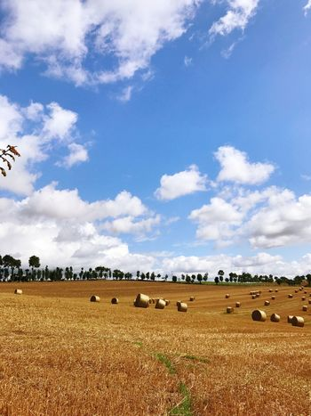 Maël-carhaix Brittany Sky Field Agriculture Bale  Rural Scene Cloud - Sky Day Landscape No People Hay Nature Animal Themes Blue Hay Bale Beauty In Nature Scenics Outdoors