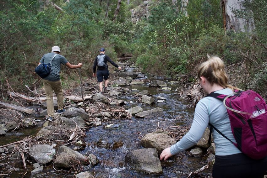 Hikers Outdoors Hiking Trekking Nature Get Outdoors Leicacamera Alpine National Park Camping Backpacking Hiking Adventures
