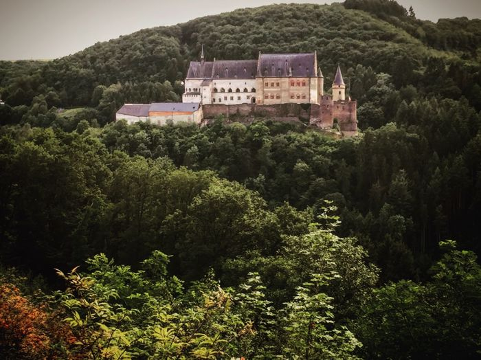 Castle in Vianden, Luxemburg. Built Structure Architecture Nature Mountain Outdoors Beauty In Nature Landscape Castle Vianden Luxemburg Medieval Knight  King Queen