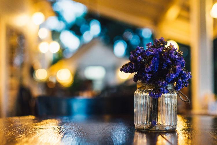 Close-up Flower Focus On Foreground Illuminated Indoors  No People