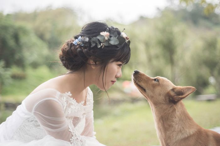 Wedding Bride Dog Young Women One Person One Animal Domestic Animals Pets Love Happiness Outdoors Day EyeEm EyeEm Best Shots EyeEm Gallery The Week On EyeEm Capture The Moment Taking Photos Atmospheric Mood Photooftheday Photographer Nikon Lifestyles Life Taiwan