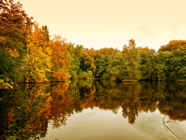 Reflections. Autumn Autumn Colors Beauty In Nature Change Day Lake Landscape Leaves Nature No People Outdoors Reflection Reflection Lake Scenics Sky Tranquility Tree Water