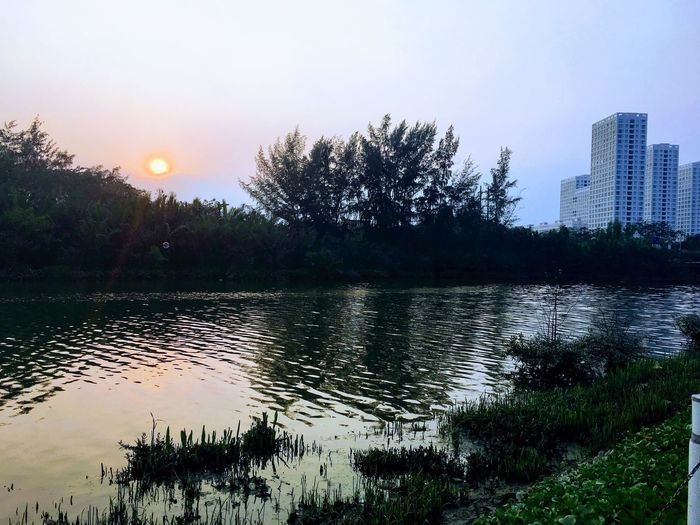 Lake Tree Water Reflection Sunset Sun Sky Building Exterior Lake Beauty In Nature Nature City