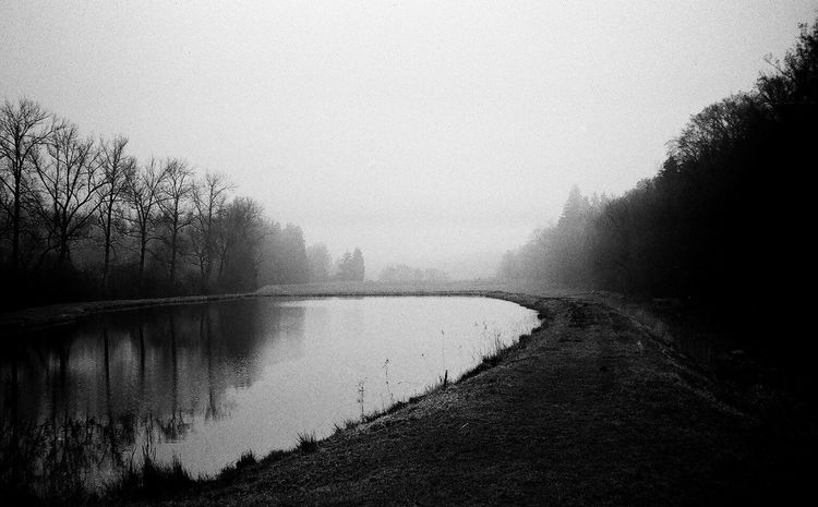 In the park Blackandwhite Clear Sky Film Film Photography Germany Lake Nature Outdoors