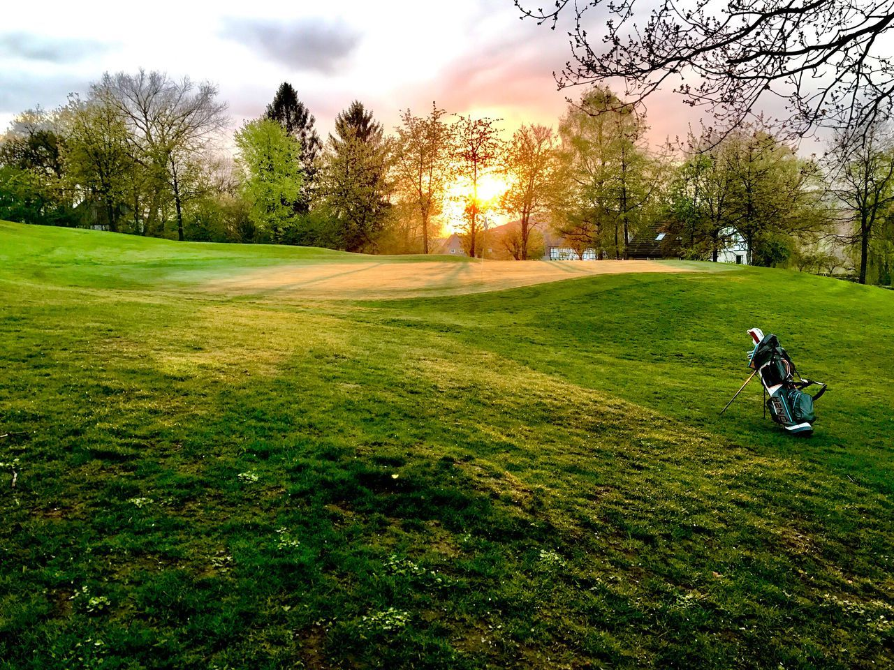 grass, tree, golf course, golf, field, leisure activity, green color, nature, real people, sport, men, transportation, growth, outdoors, land vehicle, beauty in nature, sky, green - golf course, landscape, full length, day, one person, sportsman, golfer, driver - golf club, people