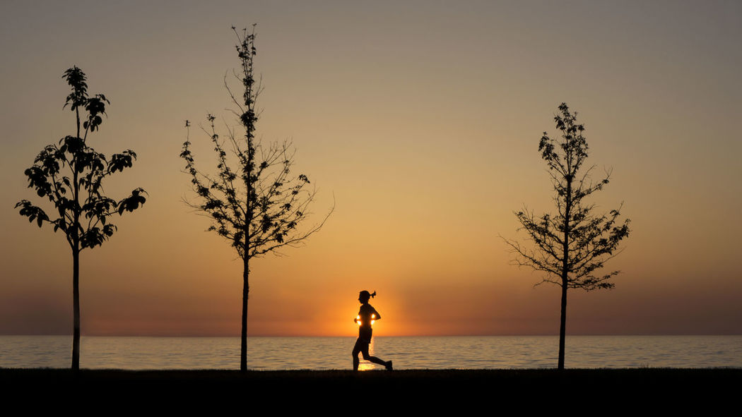 Sunrise Sony A6000 Runner Trees Great Lake Chicago
