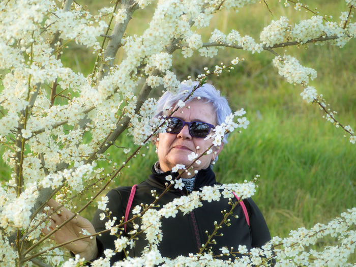 Portrait of senior woman standing by flowers blooming in park