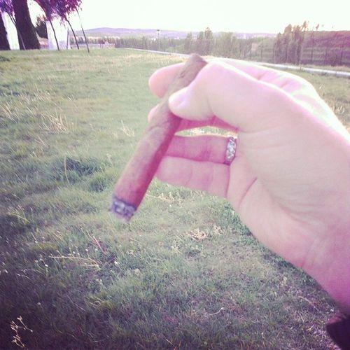 DIStylelife Cigar Caliqueño