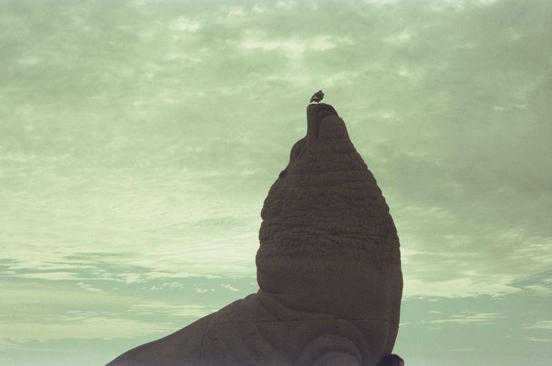 Contemplación Buenosaires Playa Beach Mardelplata Atardecer Atardeceresporelmundo Travel Visiting Instatravel Mardel Tourism Tourist Instatraveling Mytravelgram VSCO Lobo Lobomarino Paloma Time Sea Sky Sculpture Statue Horizon Over Water