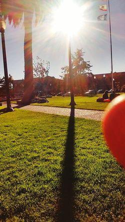 Arcata California Plaza...... 080816 Taking Photos Magic... Loving Life! ! ! MY EYES EXPECT TO. WIN!!!