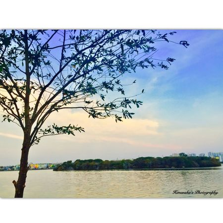 Tree Nature Sky Outdoors Water Beauty In Nature Landscape Relaxation Sunset Illuminated