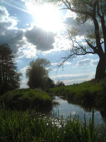 Sky Love To Take Photos ❤ Nature Pretty♡ Springtime Forestwalk Blossom Summer ☀ Water Nature Photography Hannah CSI Marie Hasenglück Vladimir