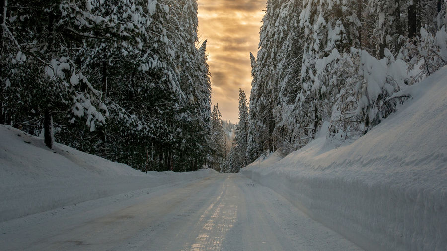 Snow covered road by trees against sky during sunset